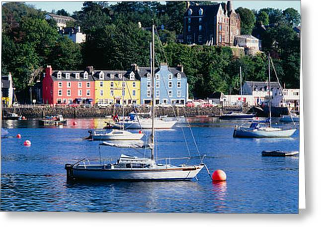 Boats Docked At A Harbor, Tobermory Greeting Card by Panoramic Images