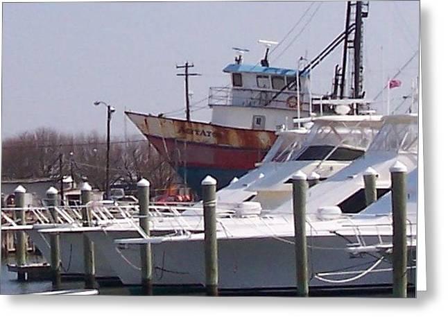 Boats Docked Greeting Card by Pharris Art