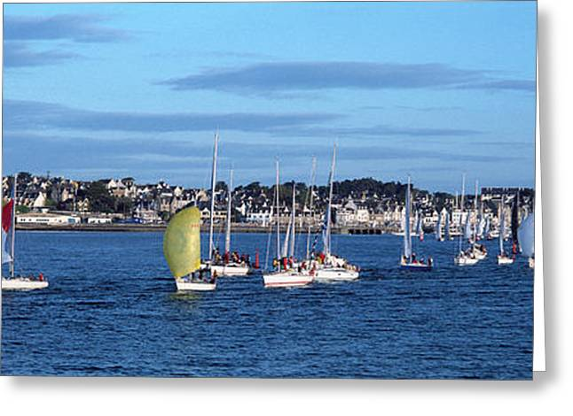 Boats In Regatta, Quiberon Bay Greeting Card by Panoramic Images