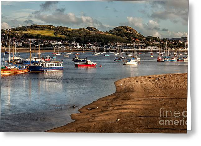 Boats In The Harbour Greeting Card by Adrian Evans