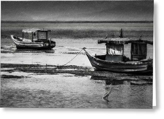 Boats Of Trinidad Greeting Card