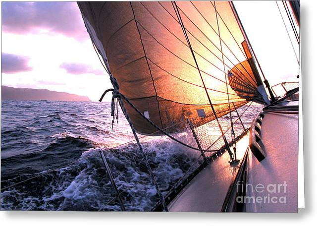 Boats Wing  Greeting Card by Boon Mee