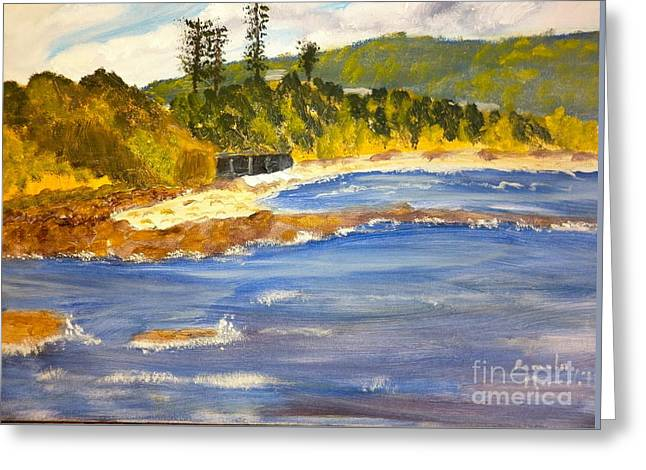 Boatsheds At Sandon Point Greeting Card by Pamela  Meredith