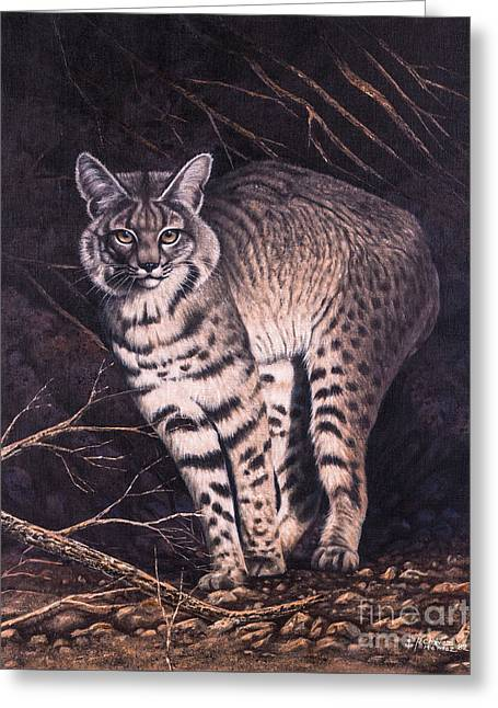 Bobcat Greeting Card by Ricardo Chavez-Mendez