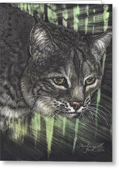 Bobcat Watching Greeting Card by Stephanie Ford
