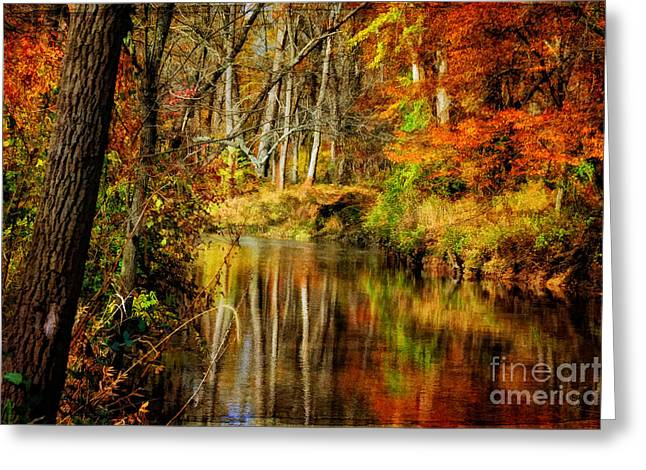 Bob's Creek Greeting Card by Lois Bryan