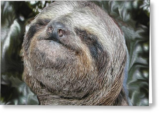 Boca Sloth Greeting Card