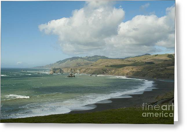 Bodega Bay California Greeting Card