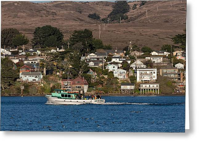 Bodega Bay In December Greeting Card