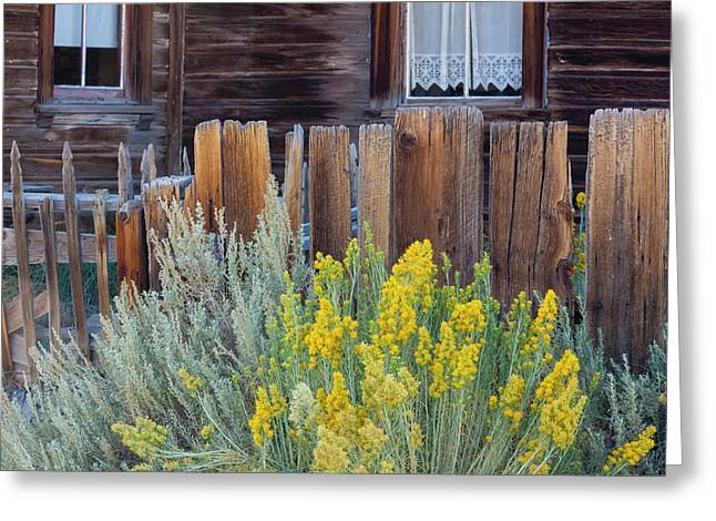 Bodie, California, Usa Greeting Card by Art Wolfe