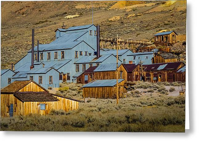 Bodie Greeting Card by Janis Knight
