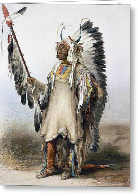 Bodmer Mandan Chief Greeting Card by Granger