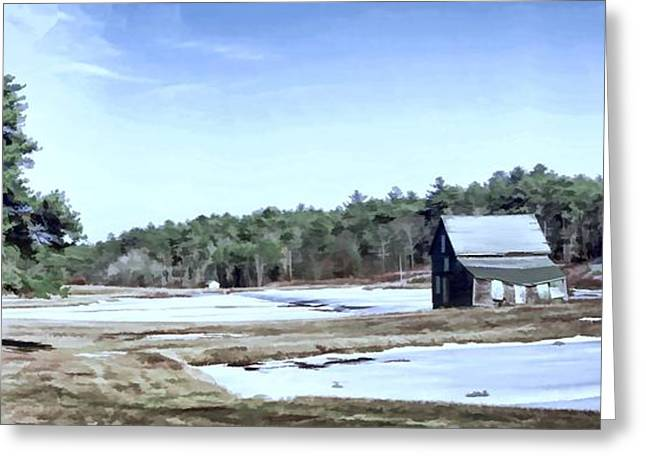 Greeting Card featuring the photograph Bog In Winter by Constantine Gregory