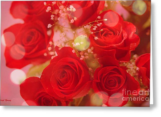 Bokeh Roses Greeting Card by Cheryl Young