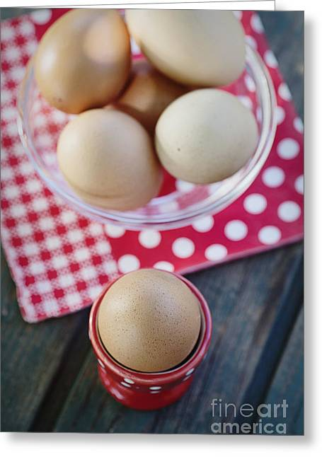 Bolied Eggs  Greeting Card by Mythja  Photography