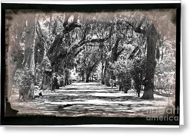 Retro Bonaventure Cemetery Greeting Card
