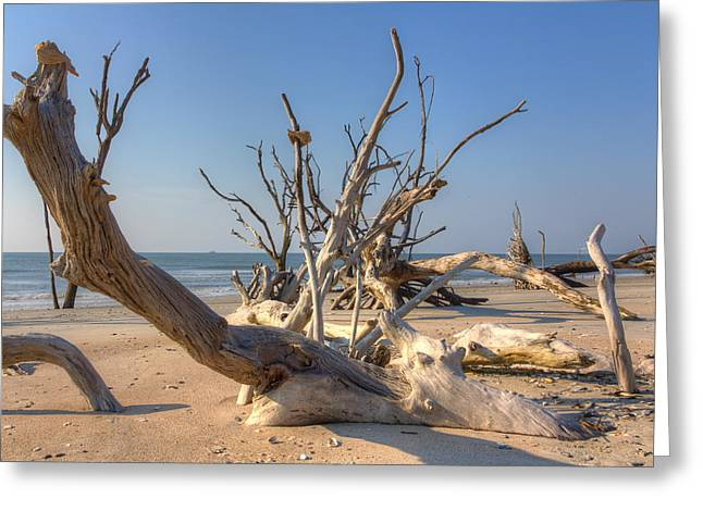 Boneyard Beach Greeting Card by Patricia Schaefer