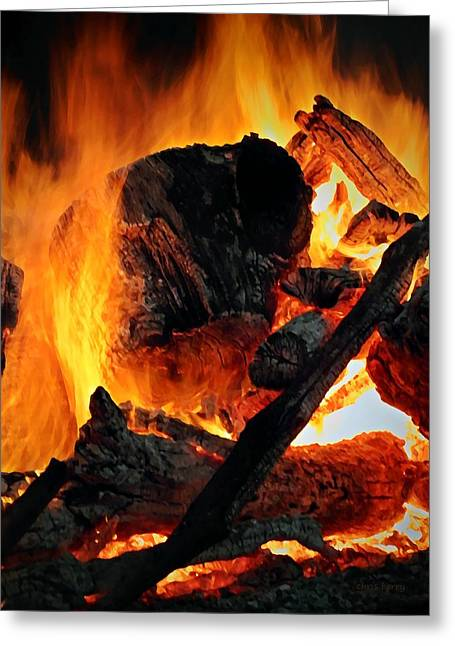 Bonfire  Greeting Card by Chris Berry
