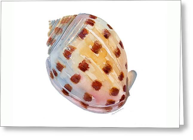 Bonnet Shell Greeting Card by Amy Kirkpatrick
