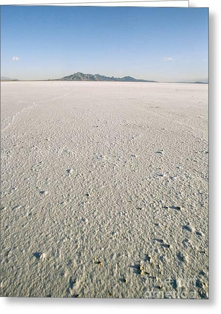 Bonneville Salt Flats Greeting Card by Mark Newman
