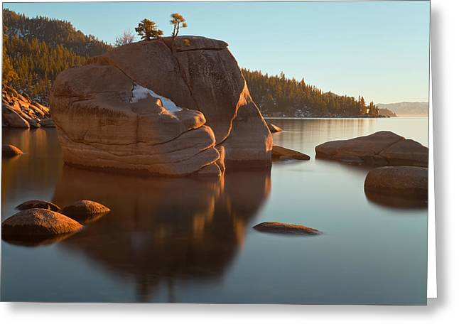 Greeting Card featuring the photograph Bonsai Rock by Jonathan Nguyen