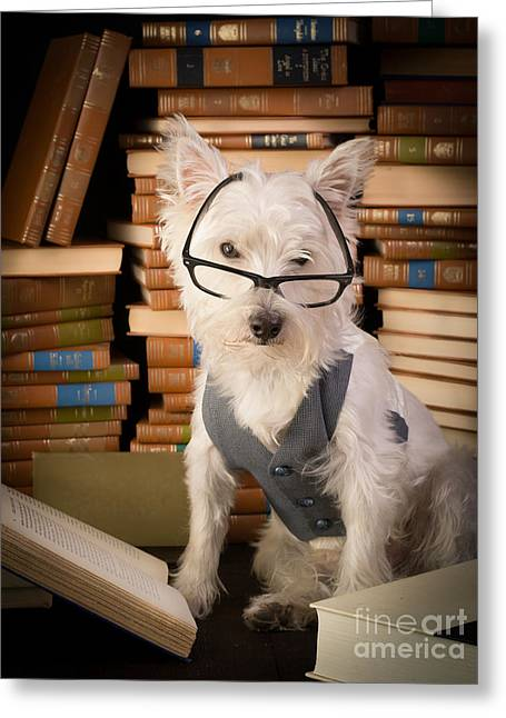 Bookworm Dog Greeting Card by Edward Fielding