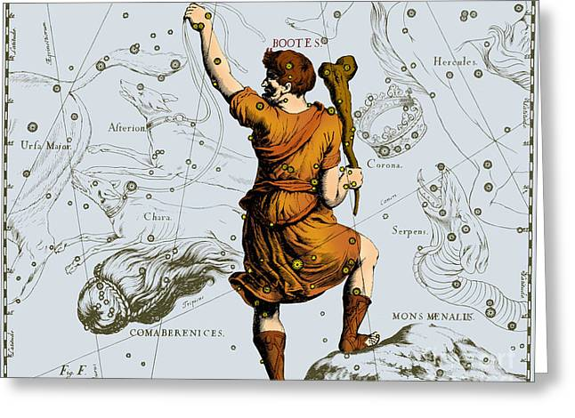 Bootes Constellation, 1687 Greeting Card by Science Source