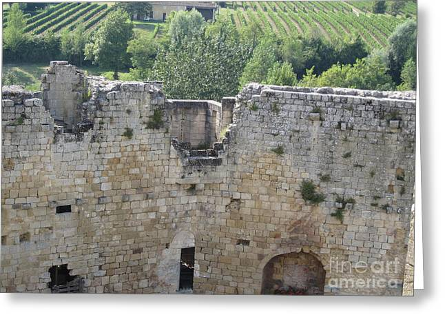 Greeting Card featuring the photograph Bordeaux Castle Ruins With Vineyard by HEVi FineArt