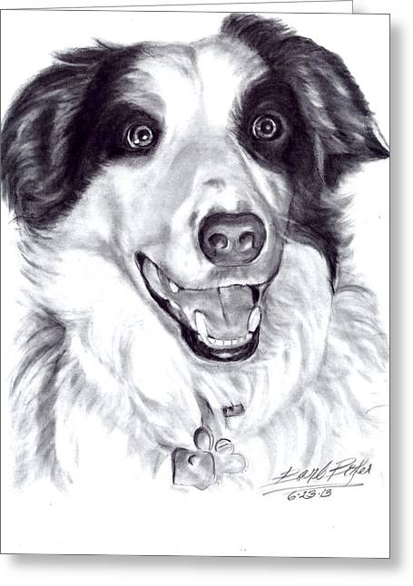 'border Collie' Greeting Card by Barb Baker