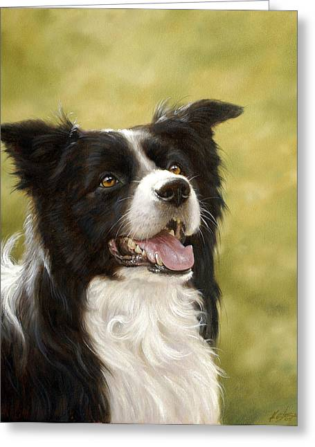 Border Collie Head Study Greeting Card by John Silver