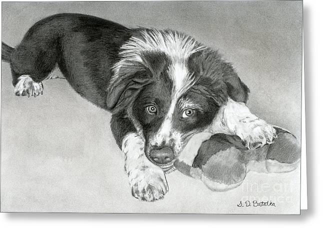 Border Collie Puppy Greeting Card by Sarah Batalka