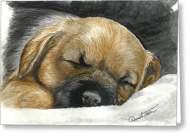 Border Terrier Puppy Nap Greeting Card by Daniele Trottier