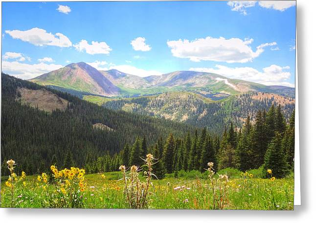 Greeting Card featuring the photograph Boreas Pass Summer by Lanita Williams