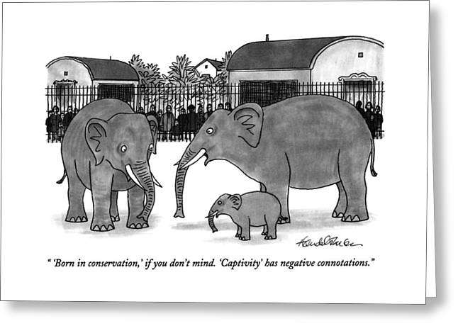 'born In Conservation Greeting Card