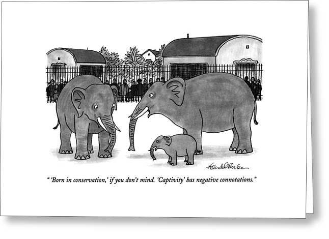 'born In Conservation Greeting Card by J.B. Handelsman