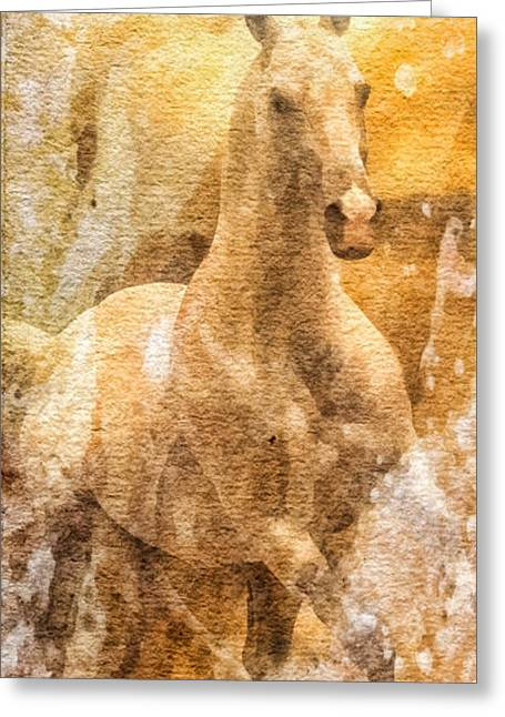 Born To Be Free Greeting Card by Mo T