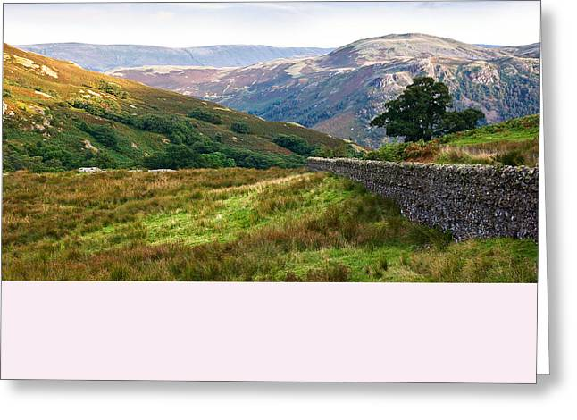 Greeting Card featuring the photograph Borrowdale Valley In The Lake District by Jane McIlroy