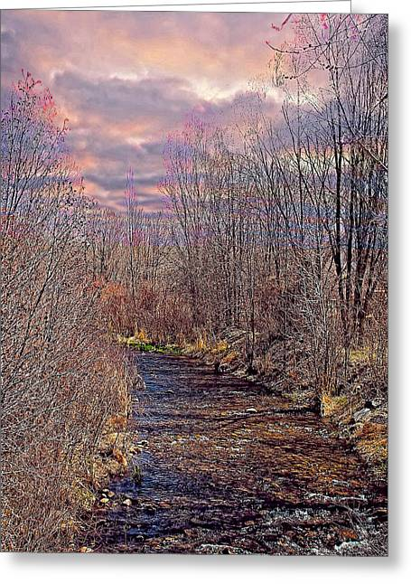 Bosque Evening Greeting Card by Charles Muhle