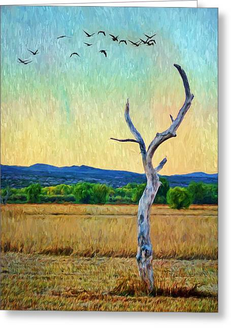 Bosque Sunset - Lone Tree Greeting Card