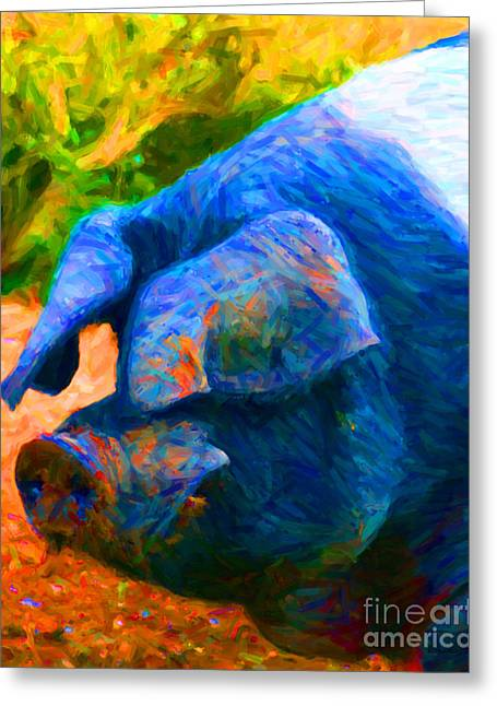 Boss Hog - 2013-0108 Greeting Card by Wingsdomain Art and Photography