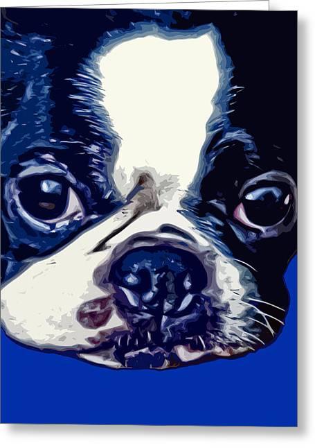 Boston Terrier Pop Art 2 Greeting Card by David G Paul