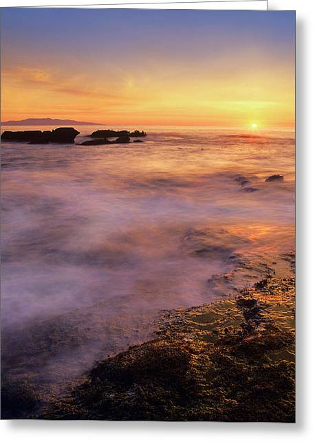 Botanical Beach, Vancouver Island Greeting Card