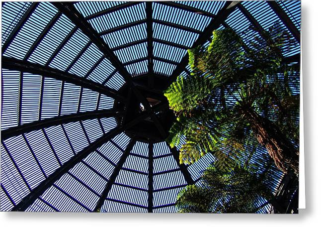 Botanical Building Atrium - Balboa Park Greeting Card by Glenn McCarthy