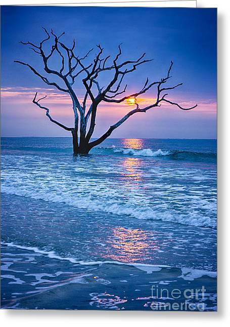 Botany Bay Sunrise 2 Greeting Card by Carrie Cranwill