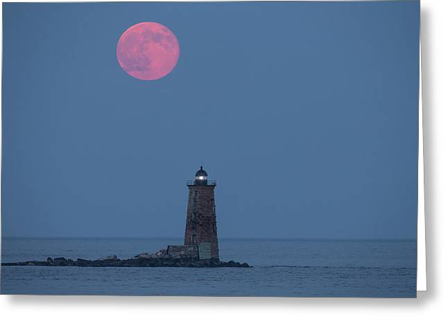Both The Supermoon And Whaleback Greeting Card by Robbie George