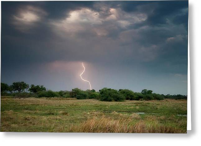 Botswana, Africa Grassland Landscape Greeting Card