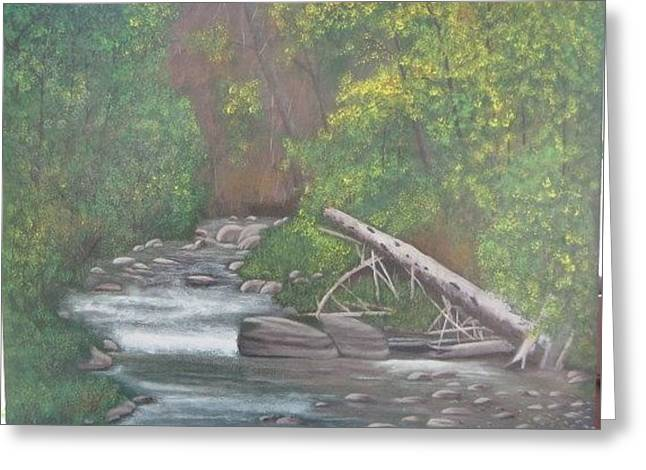 Boundary Creek  Bc Greeting Card