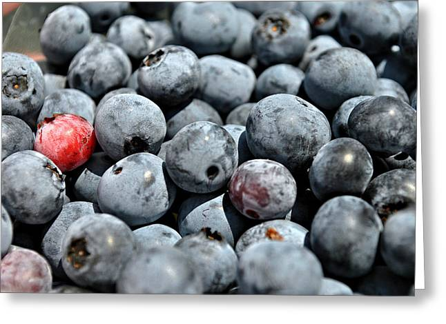 Greeting Card featuring the photograph Bountiful Blueberries by Kelly Nowak