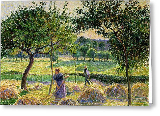 Bountiful Harvest, 1893 Greeting Card by Camille Pissarro
