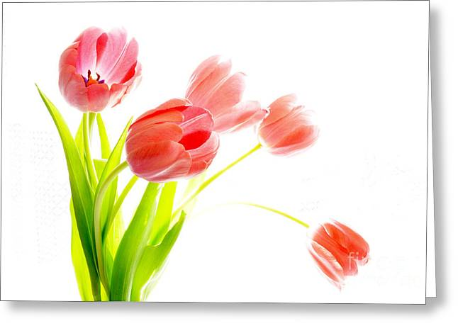 Tulips Flower Bouque In Digital Watercolor Greeting Card